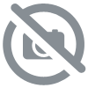 Liqueur de sapin x Distillerie Pierre Guy (70cl/40°)
